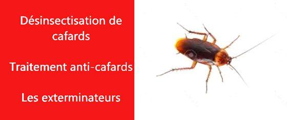 cafards Val de Marne 94
