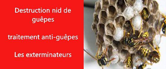 nid de guepes Val de Marne 94
