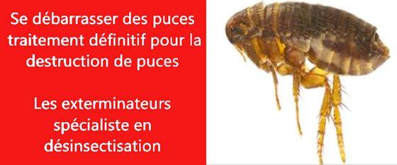 puce de lit Seine Saint-Denis 93