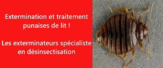 punaise de lit Seine Saint-Denis