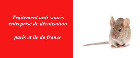 supprimer souris Seine Saint-Denis 93