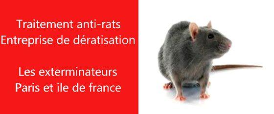 supprimer rats Hauts de Seine 92