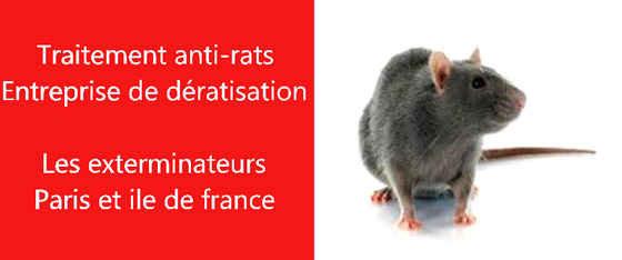 supprimer rats Seine Saint-Denis 93