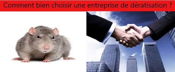 entreprise-de-deratisation-paris-choisir