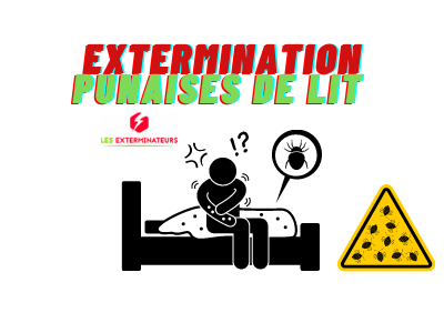 extermination punaises de lit paris